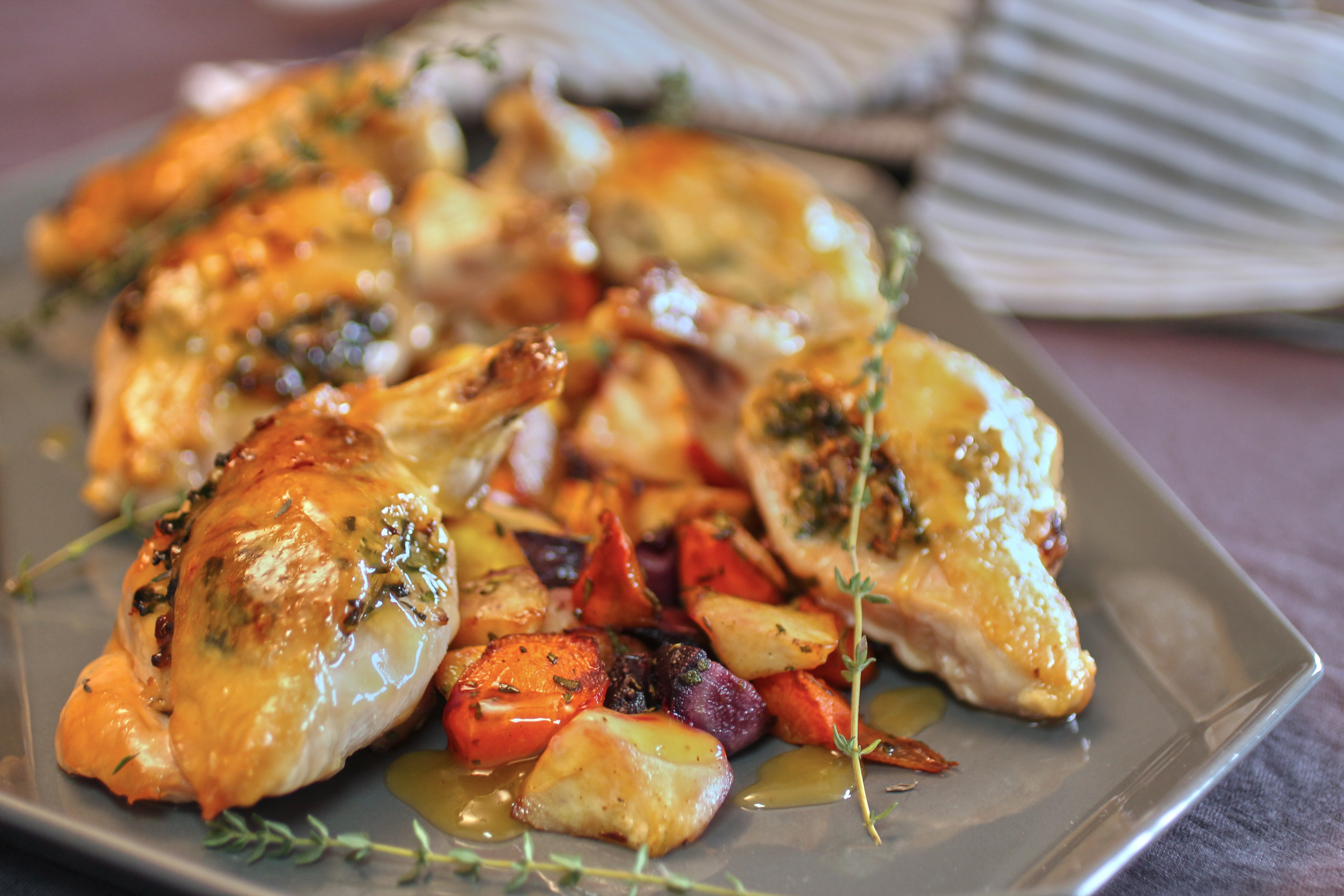 Matzo Farfel Stuffed Apricot Chicken